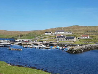 Budget accommodation for birdwatching in Shetland