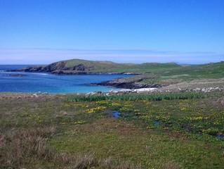Beautiful Burra Isle Shetland