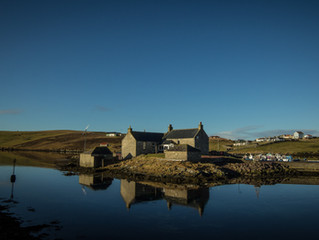 Budget accommodation in Shetland perfect for bird watching holidays