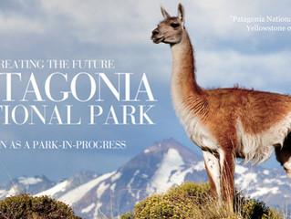Patagonya'da neler olduğunu bilsen, iki ağaç dikip çevrecilik yaptım demezsin