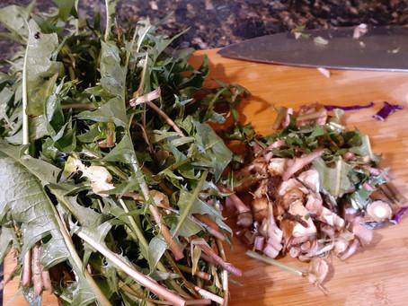 Dandelion Weed or Medicine