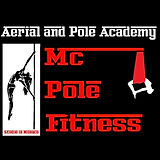 aerial and pole academy.jpg