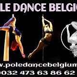 pole dance belgium.jpg