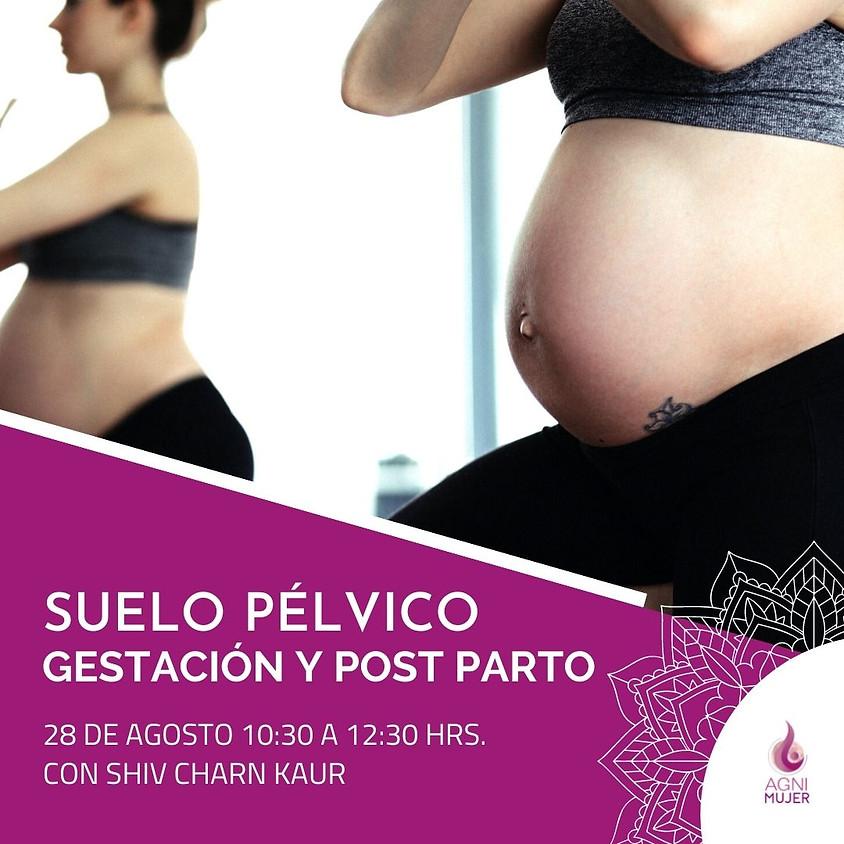 """Taller Online Maternidad: """"Cuidados del suelo pélvico en la gestación y post-parto"""""""