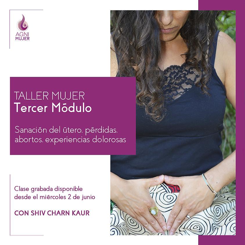 Taller Online Mujeres: Sanación del Útero, pérdidas, abortos y experiencias dolorosas