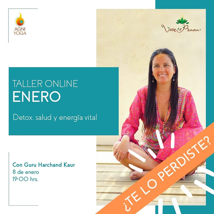 Grabación Taller Online: Detox, salud y energía vital