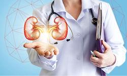 Nephrology.jpg