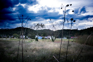 20111115_Fukusima002.jpg