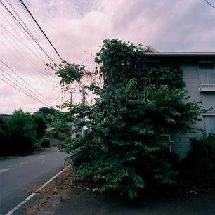 Kazuma_Fukushima14.jpg