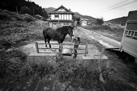 KAZUMAOBARA_NOMAOI_27.jpg