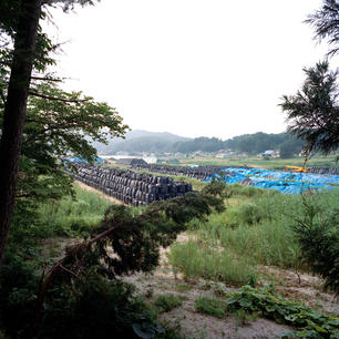 Kazuma_Fukushima9.jpg
