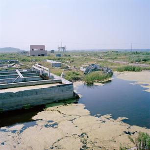 Kazuma_Fukushima3.jpg