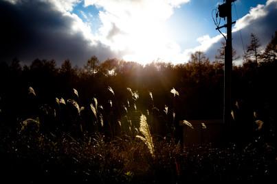 20111115_Fukusima007.jpg