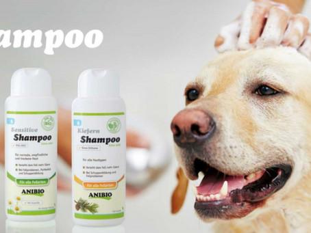 Uno Shampoo per tutti i gusti!