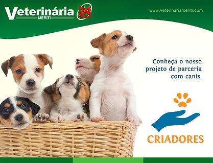 Projeto para Criadores de cães
