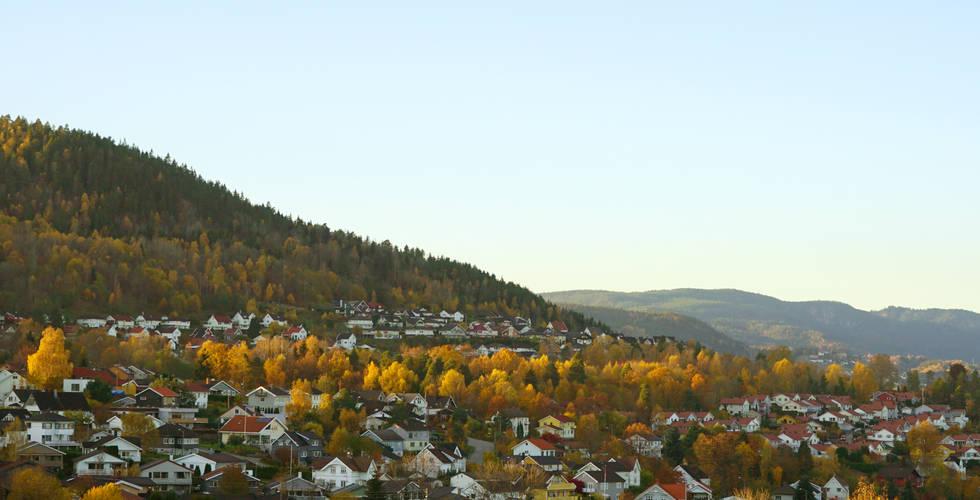 Drammen autumn landscape..jpg