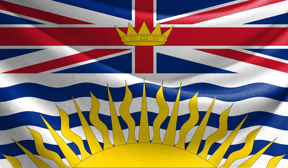 The BC government is providing $345 Million for a Small and Medium Business Recovery Grant program which provides recovery grants to companies employing between 2 and 149 B.C. residents or contractors.
