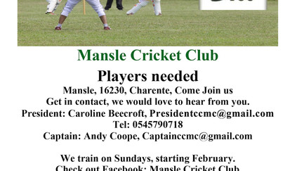 Cricket lovers get involved! Join us for 2019