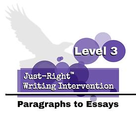 Level 3 logo 21-22 white background.png