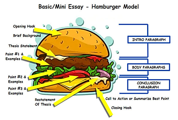 hamburger essay.png