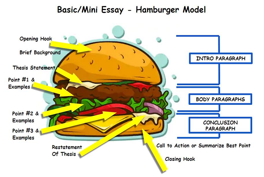 hamburger essay.png