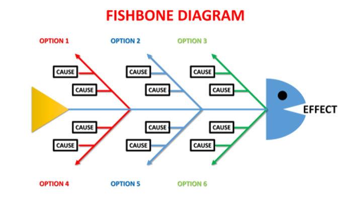 basic fishbone.jpg