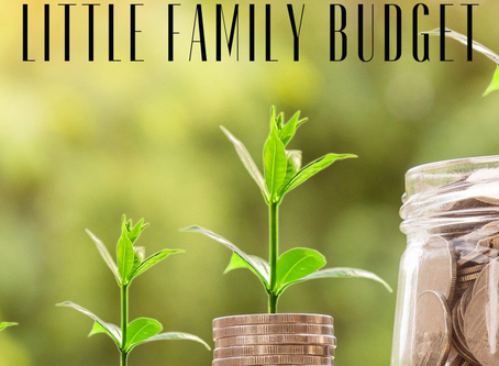 Big Family Budget Little Family Budget