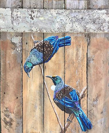 Tui Bird NZ Tui New Zealand Poi Filament Feathers Maori Totem
