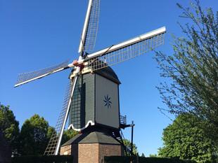 השבוע פגשתי שתי כוכבות מחזות זמר הולנדיות