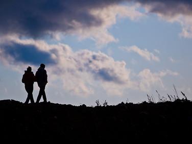 המטפל הזוגי כמנהל תהליך של שינוי