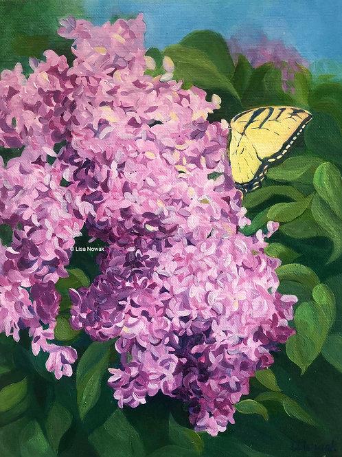Lilac Landing