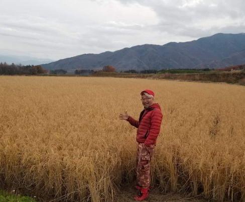 momoG farm