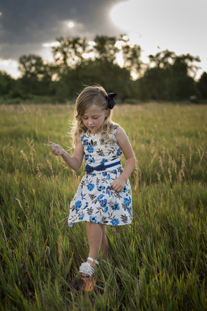 Outdoor family photo shoot, little girl walking and picking tall grass