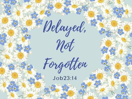 Delayed, Not Forgotten