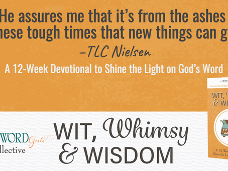 Wit, Whimsy and Wisdom w/ Gina and TLC