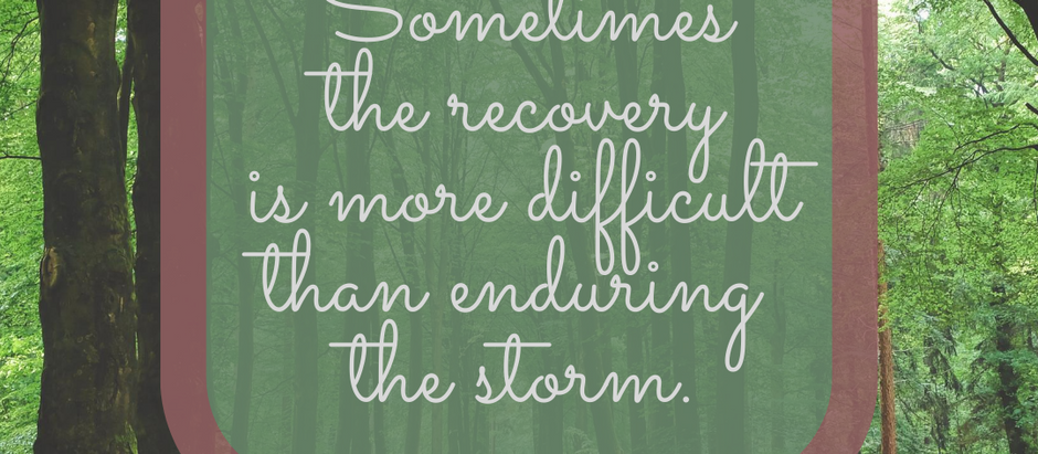 Recovery Efforts
