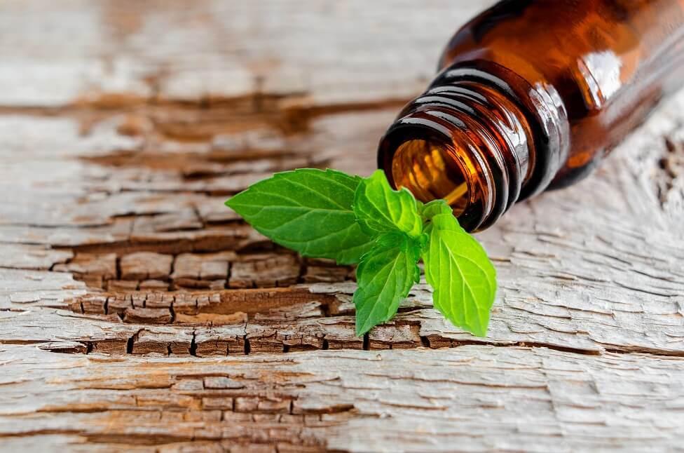 טיפול בצמחי מרפא