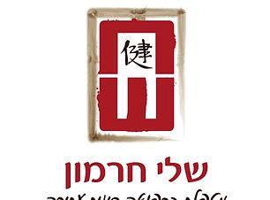 לוגו פייסבוק סינית.jpg