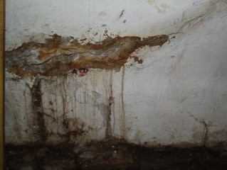 Seeking Foundation Drainage Advice? Read This First