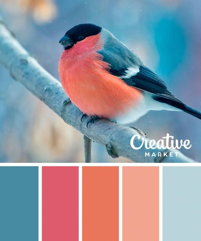 winter-saturated-color-palette