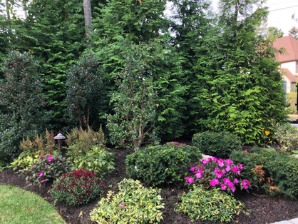 Landscape Management | Sequoia Outdoor Living on Sequoia Outdoor Living id=35116