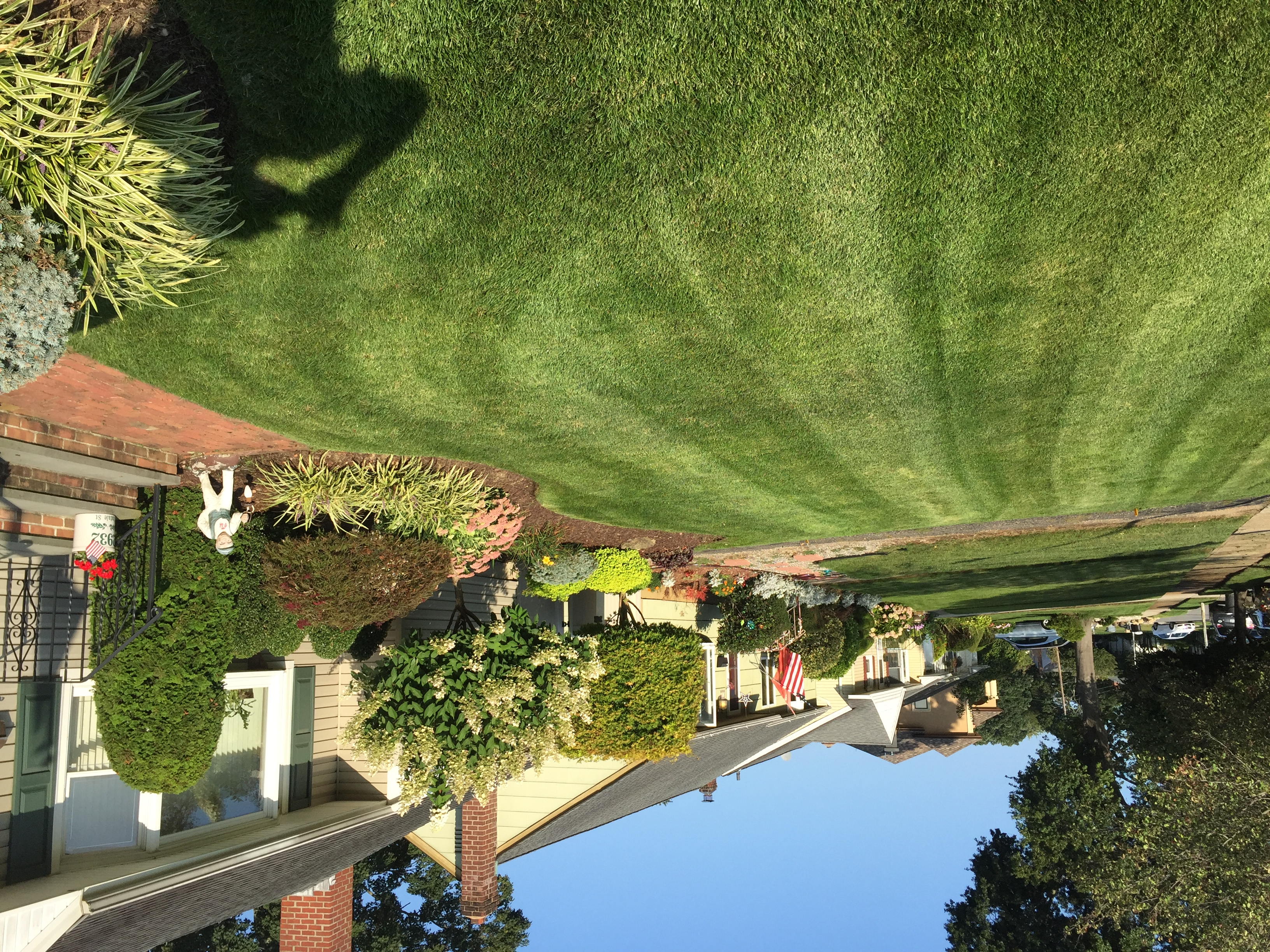 Landscape Management | Sequoia Outdoor Living on Sequoia Outdoor Living id=53599