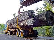 lumber-1713722_1920.jpg