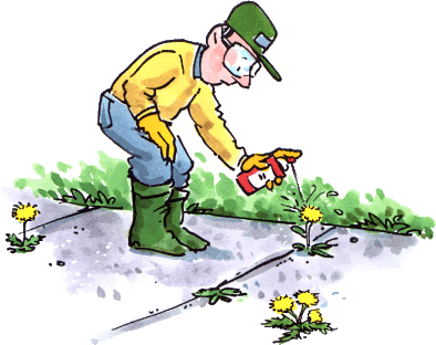 Weed control and prevention