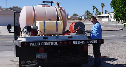 Weed control by CTM Pest