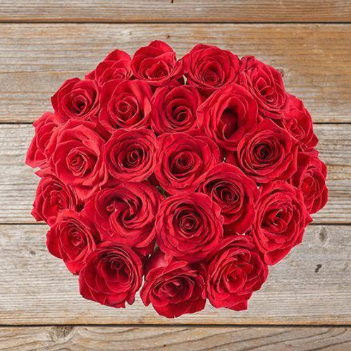 Inconditionnelle roses Rouge