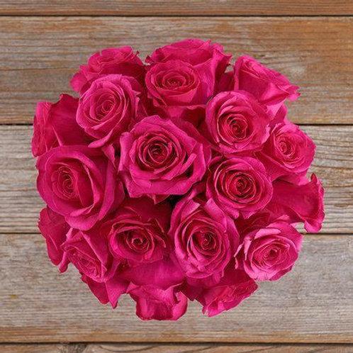 Inconditionnelle roses Rose Fuschia