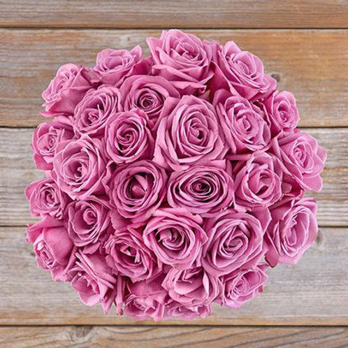 Inconditionnelle roses Rose