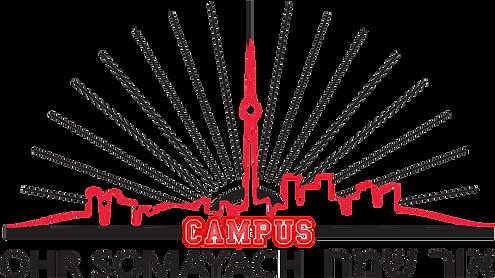 Logo - BIG CAMPUS clear - tight crop.png