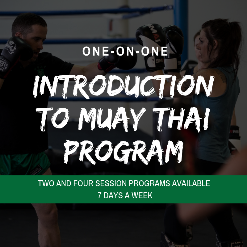 Introduction to muay thai (2).png